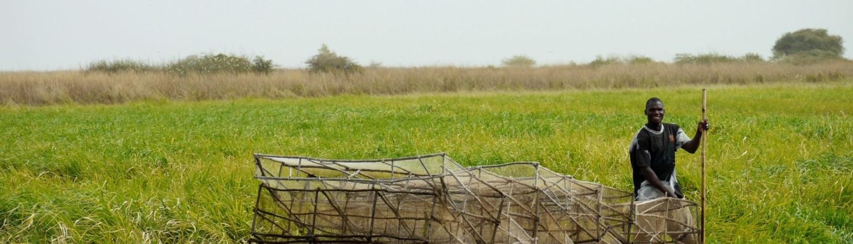 Fotografie: Inner-Niger Delta-fishermann. Bron: Wetlands International (Jane Madgwick)